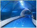 广州天河区有没有能做大型鱼缸定制的 洋清水族能做商场鱼缸