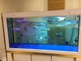 专业鱼缸清洗维护