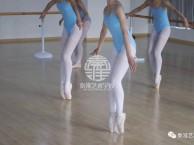江西秦淮艺术学校 专业芭蕾舞中国舞古典舞民族舞艺考培训学校