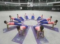 拉丁 瑜伽 爵士 肚皮 中国舞 零基础教培单色舞蹈