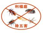 重慶滅鼠藥品 重慶殺白蟻 重慶滅老鼠費用