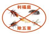 威海单位抓蟑螂 威海灭白蚁 威海消灭蟑螂