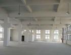 滨海3楼2300平货梯3吨层高5米院子大厂房气派