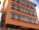 出售开平市虹桥路白岗新村一栋楼 写字楼 580平米