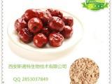 红枣速溶粉 纯天然红枣粉 高品质红枣果汁粉
