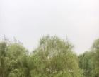 湘阴 鹤龙湖保险台 土地 190平米