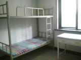 出租房20元/天/女床位,平区名佳花园三区