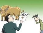 合肥资产评估需要多少钱?