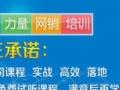 阜阳狼王网络营销培训九大营销模块,可免费试听!