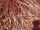 黄山专业回收废电缆废铜销子