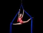 玉溪成人钢管舞爵士舞专业培训,随到随学有无基础均可