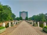 北京靜安墓園免費上門接送看墓