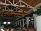 遥观 广电路附近 厂房 1100平米