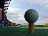 上海时代高尔夫 高尔夫球一对一教学 成人及青少年高尔夫培训