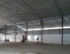 现有位于苍城镇第一工业开发区厂房3000平方出租
