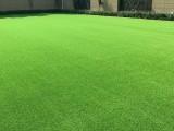 承包塑胶跑道 人造草坪