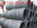 山东厂家生产镀锌盘圆 各种型号冷拔圆钢