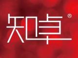 番禺知卓文化传播 品牌vi设计 名片设计