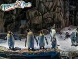 肇庆出发港澳旅游3天2晚海洋公园加迪士尼乐园澳门风情游