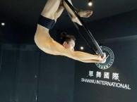 成华区职业钢管舞 钢管舞演出培训 舞蹈演员培训学校