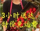黄山市屯溪区花店网上花店蛋糕店鲜花速递快递预订网上