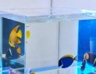 方形玻璃鱼缸,金鱼钢化水族箱,可按要求私人定制各尺寸鱼缸