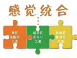 重庆幼儿语言训练专注力训练感统训练 天宝乐感统训练