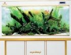 厂家直营各种生态鱼缸,龙鱼缸,超白龙缸,可定做