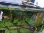 出售俩个鱼缸