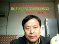 北京专业放树伐树修树中心