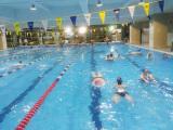 广州专业游泳教练 常年招生 室内池上课