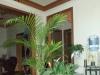 金昌-房产2室2厅-43万元