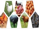 郑州菜鲜鲜承接全国蔬菜生鲜调料配送业务