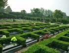 郑州树葬,树葬公墓,树葬陵园,免费树葬