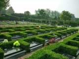 河南福壽園有樹葬的陵園