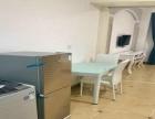 嘉丽阳光苑单身公寓 豪华装修 多套出租 看房方便