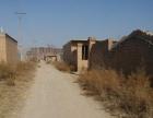 榆次大学城王杜村 两个连体4亩大棚低价出租