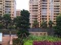 《碧海丹城》高端小区 精装2房出租 拎包入住