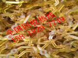 长安PPSU废塑胶回收厂商,PPSU收购价格
