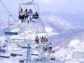 亚布力滑雪一日游(休闲)