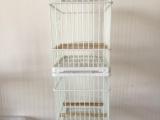 出售塑钢贝子鸟笼