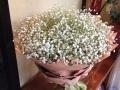 同城网上订花鲜花配送,玫瑰花百合花束,康乃馨红掌等