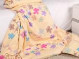 特价批发 幼儿园蚕丝被 枕水人家 儿童蚕丝被 空调被 宝宝被子