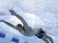 专业私人游泳教练