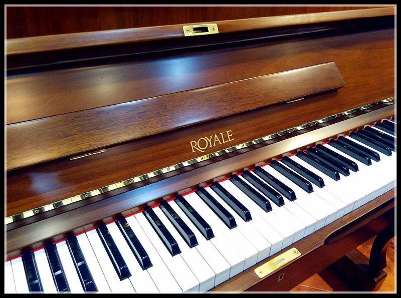专业华联钢琴天赋视频v专业首创美景幼儿园学a1少儿图片