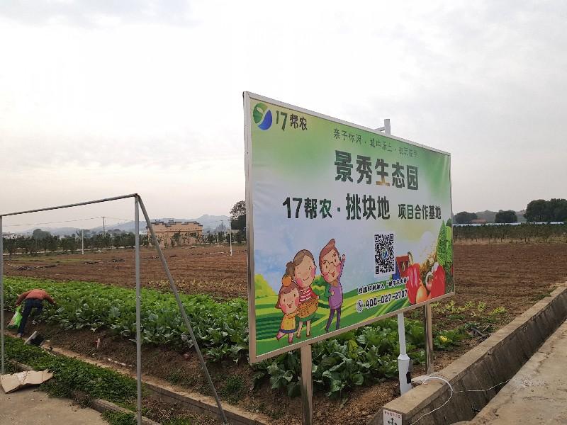 武汉共享农场+全家游打造假日新体验