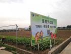 2018亲子 团建选城市共享农场