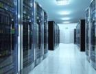 美国服务器租用价格,优质服务器