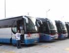 上海大巴车队提供省市旅游公司班车 学校班车