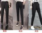 时尚女短裤韩版夏装短裤网上